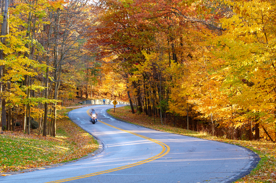 Looking for an Excuse to Take a Roadtrip before Winter?